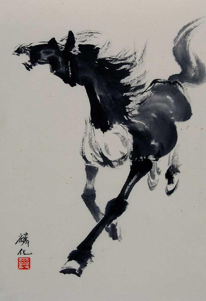 Black White Horse 1276